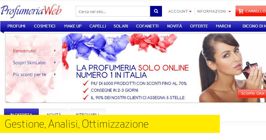 Mail Marketing, La campagna ProfumeriaWeb